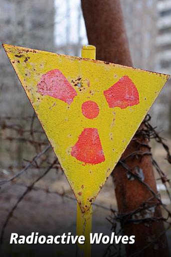 Cernobîl: lupii radioactivi